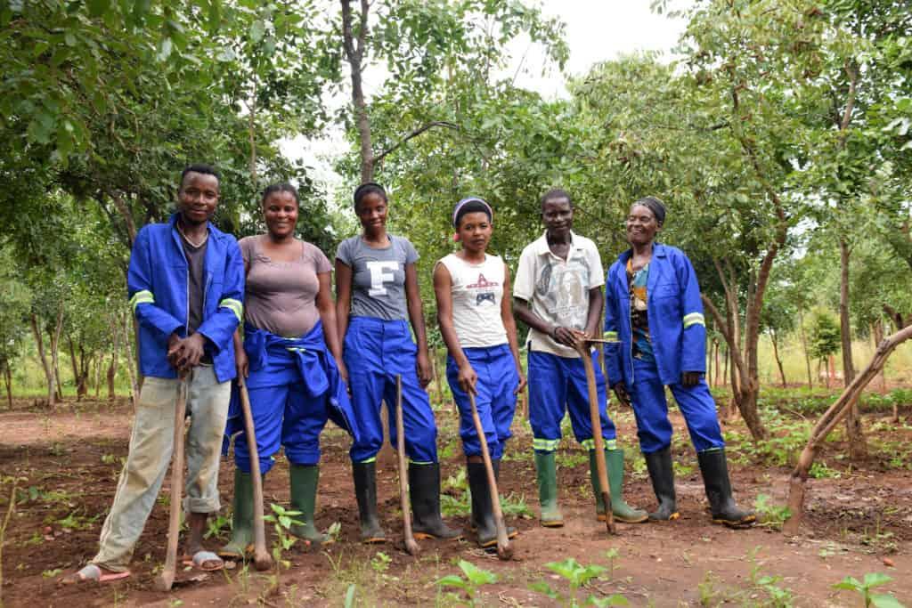 Hard Working Individuals at the Ila Community Farm