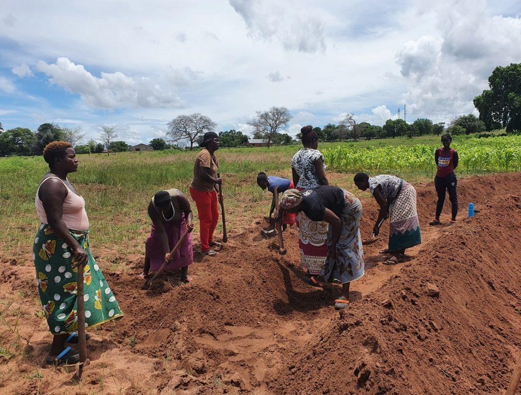 Women Farm Workers Preparing Field